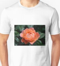 Fellowship rose T-Shirt