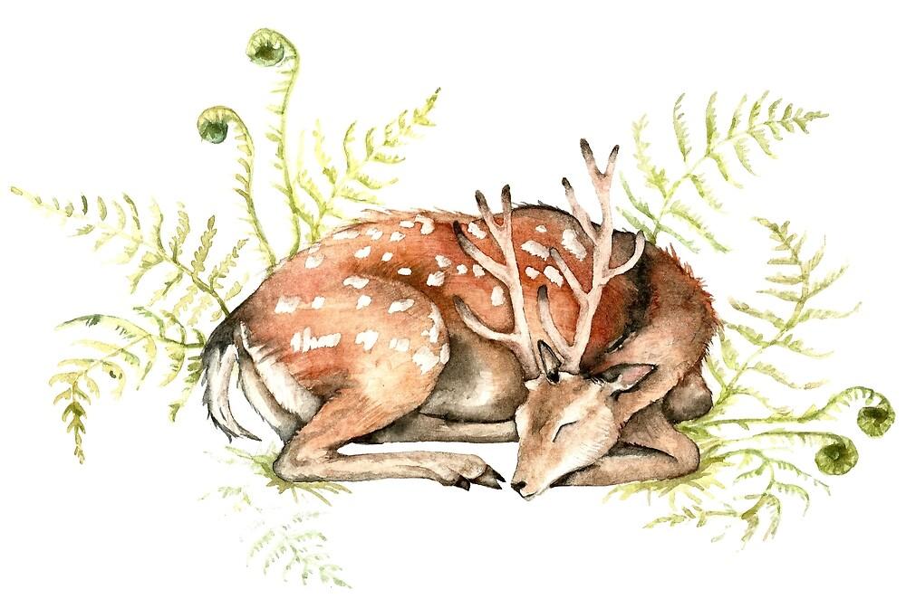 Sleeping Deer on Fern by Goosi