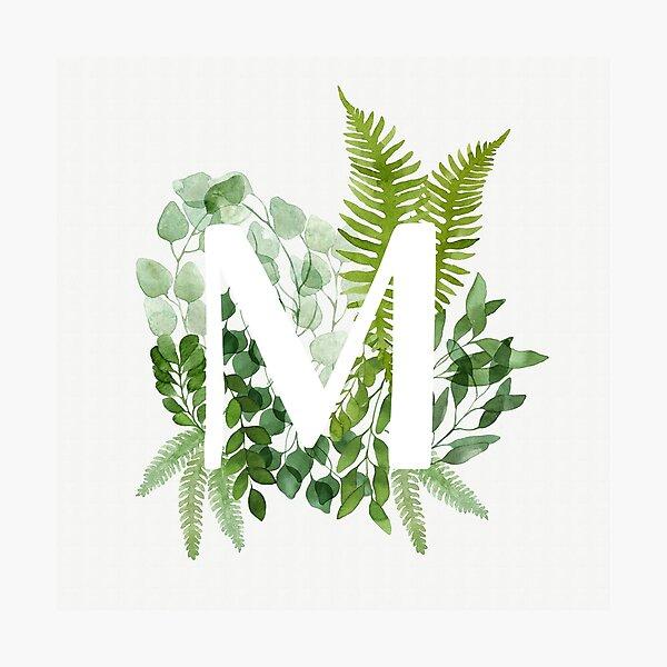 Floral letter M Photographic Print
