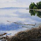 Hays Lake by Douglas Hunt