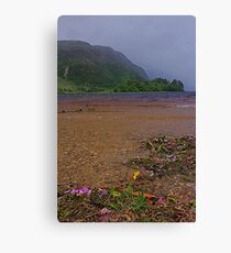 Beautiful Loch Shiel Canvas Print