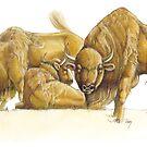 "Der Wisent - Bison Bonasus ""Wildtiere in Europa"" by SaraLutra"