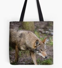 Red Wolf Hunts Unseen Prey Tote Bag