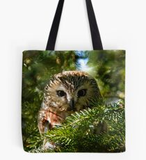 Northern Saw Whet Owl - Amherst Island, Ontario, Canada Tote Bag