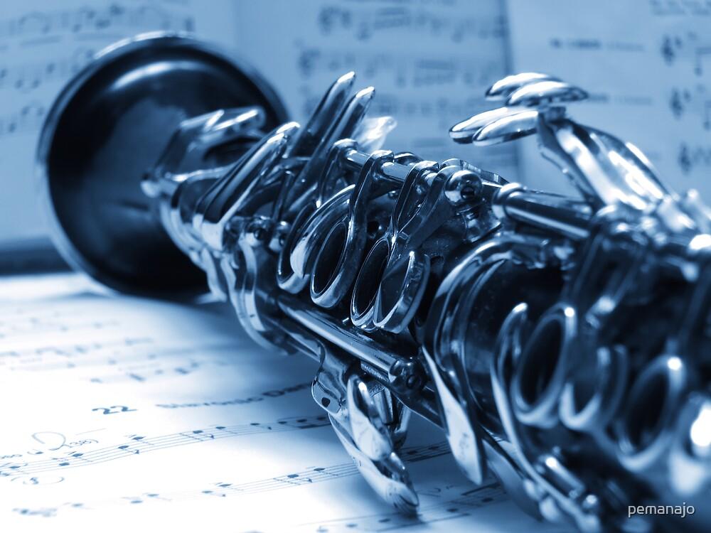 Clarinet Blues by pemanajo