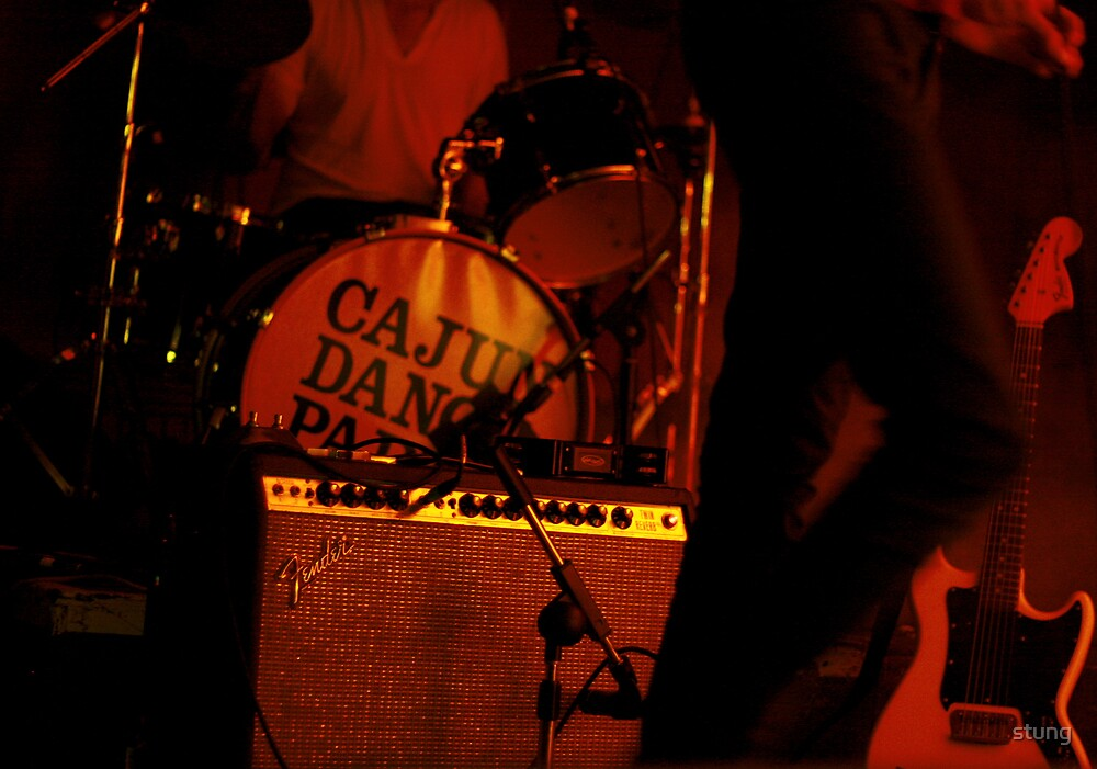 Cajun Dance Party  by Stung  Photography