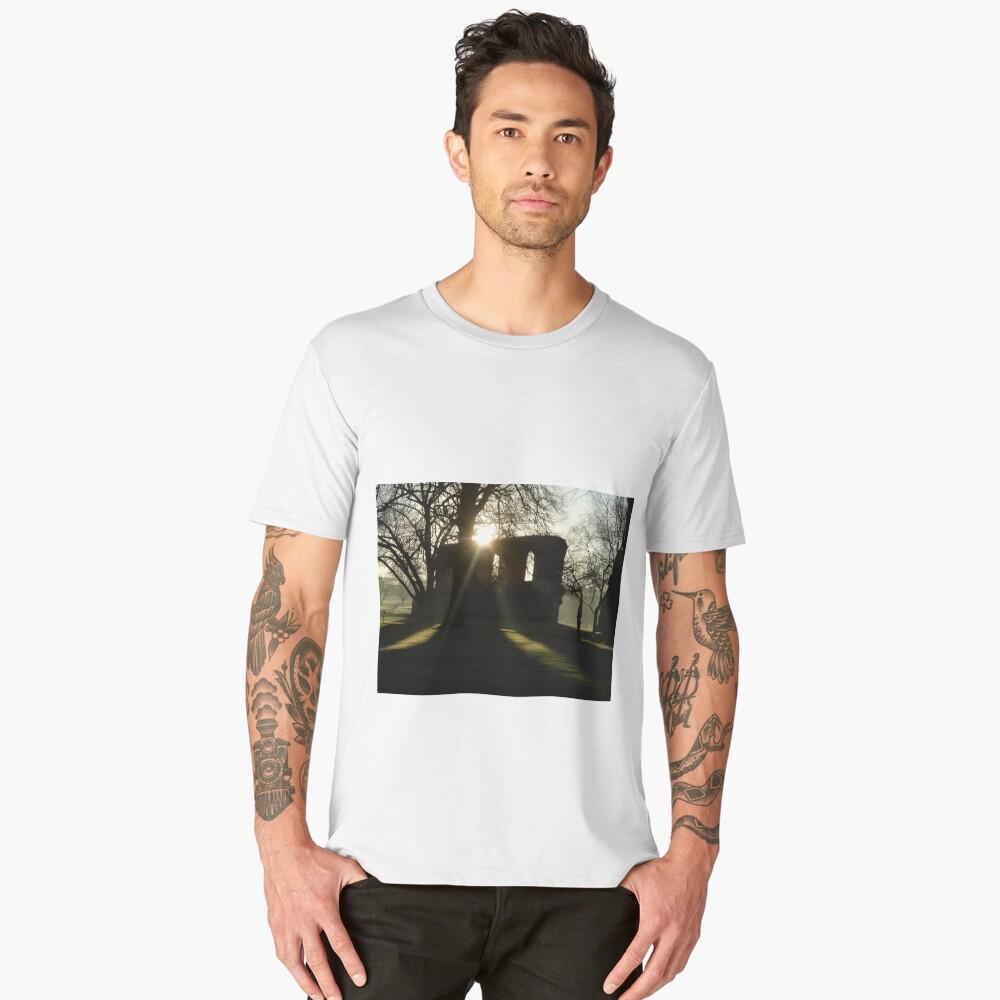 winter sunshine at Glastonbury Abbey Men's Premium T-Shirt Front