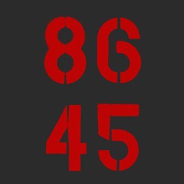86 45 / Remove Trump by RaphiS