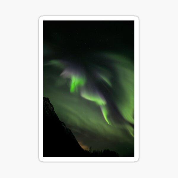 Auroral Wave Sticker