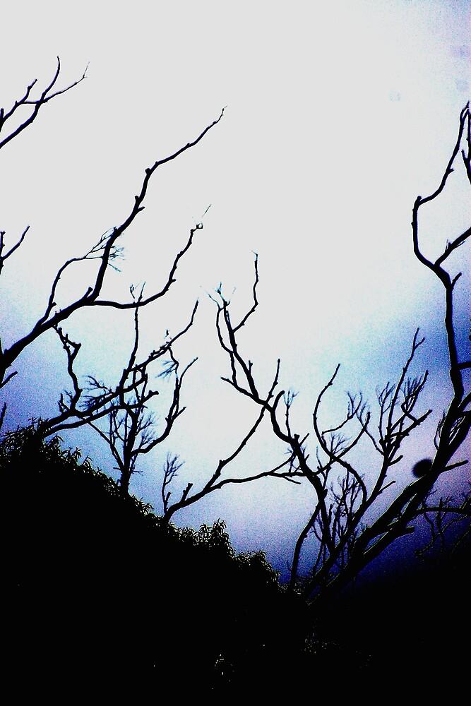 Alien Landscape by Deidre Cripwell