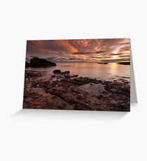 rockpools, auchmithie Greeting Card