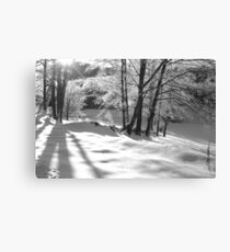 Ice Storm Canvas Print