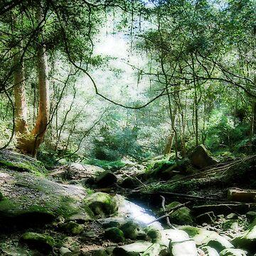 mystical wonders by caltana