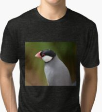 Java Finch Tri-blend T-Shirt