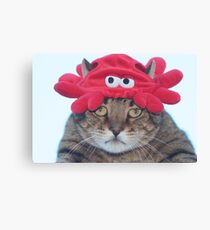 Why is there a crab hat on my head? Canvas Print