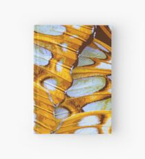 GOLDEN COLORS – Wing Series Hardcover Journal