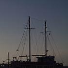 Boat at Sunset  by Lanii  Douglas