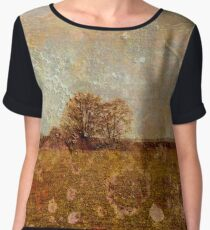 Cultivated Women's Chiffon Top