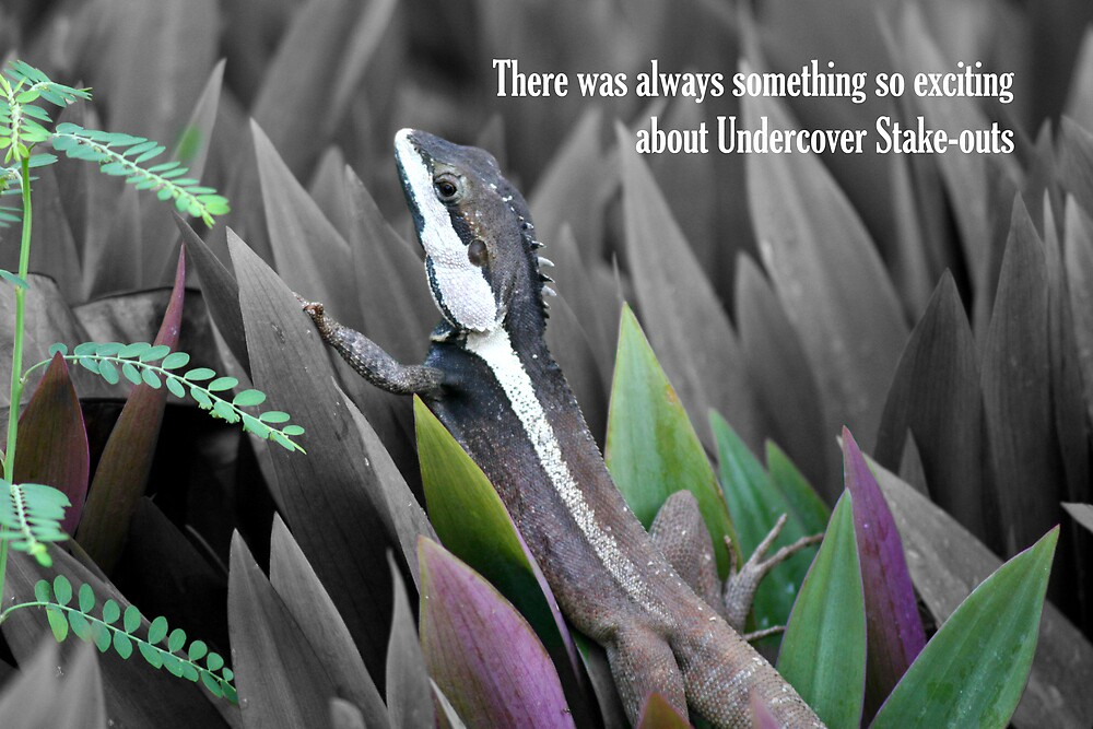 Undercover Stake-out by Dave Law