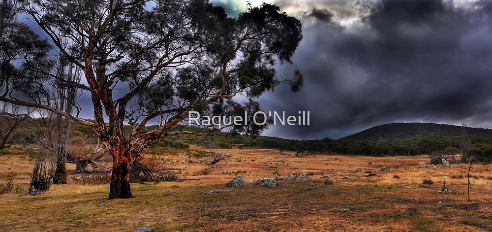 Namadgi Views by Raquel O'Neill