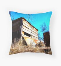 Little Shack on the Prarie Throw Pillow