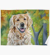 Golden Retriever Dog Painting Poster