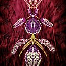Abstract Wine and Purple. by Forfarlass