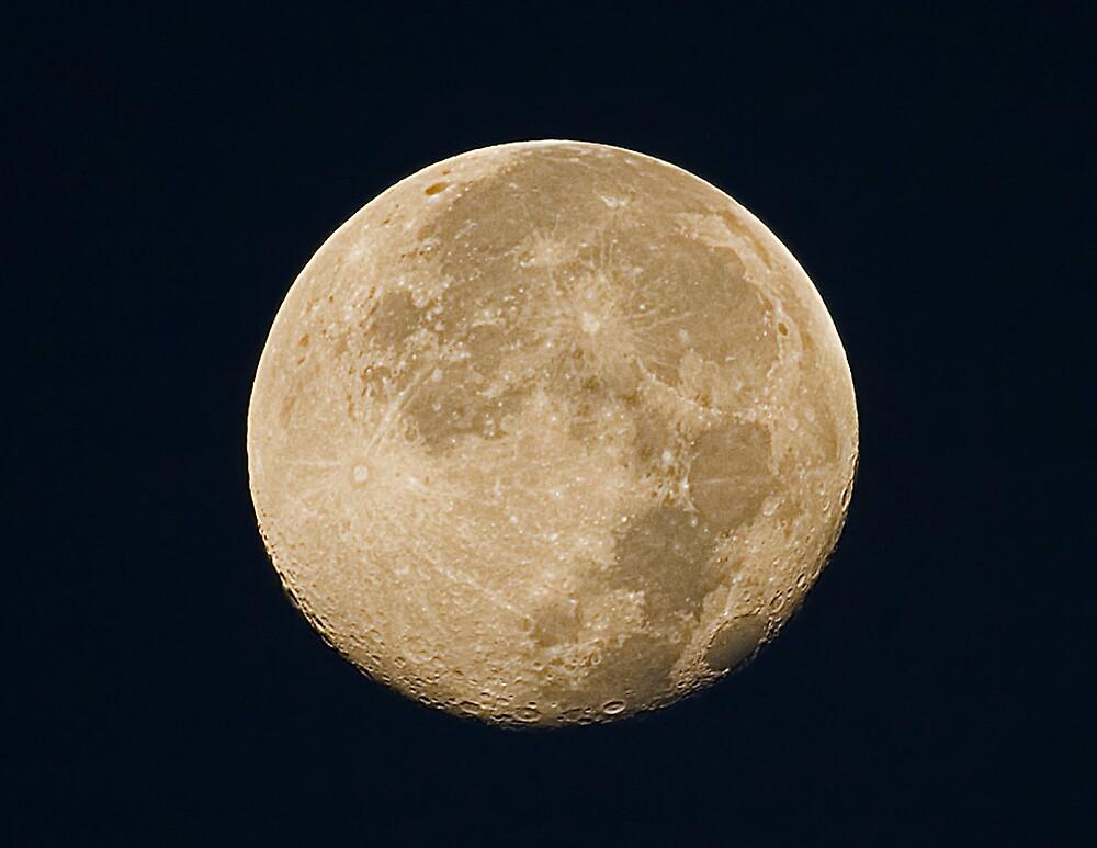 My Big Moon by snapshot102008