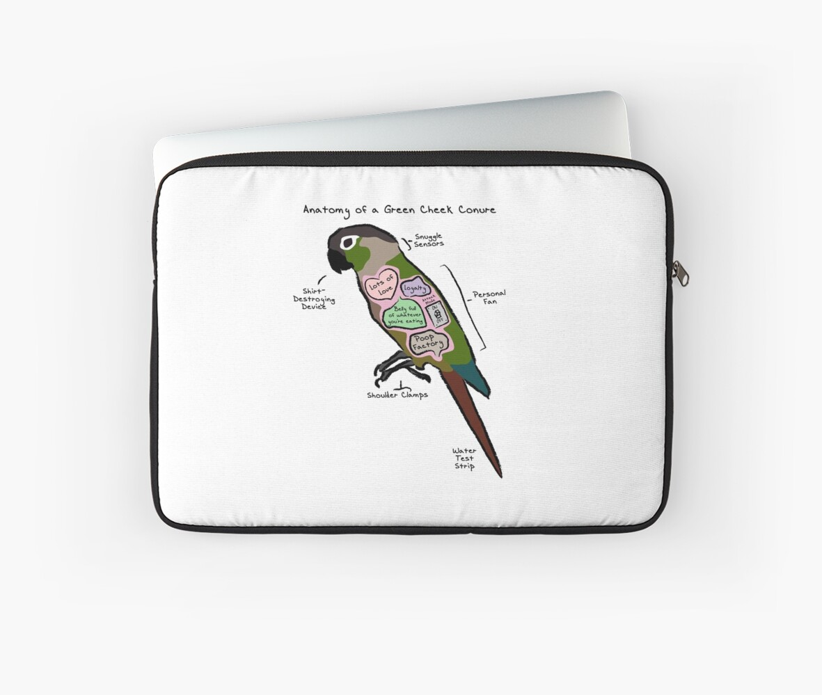 Anatomy Of A Green Cheek Conure Laptop Sleeves By Mommysketchpad
