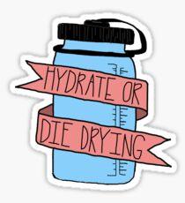 Hydrate or Die Drying Waterbottle Sticker