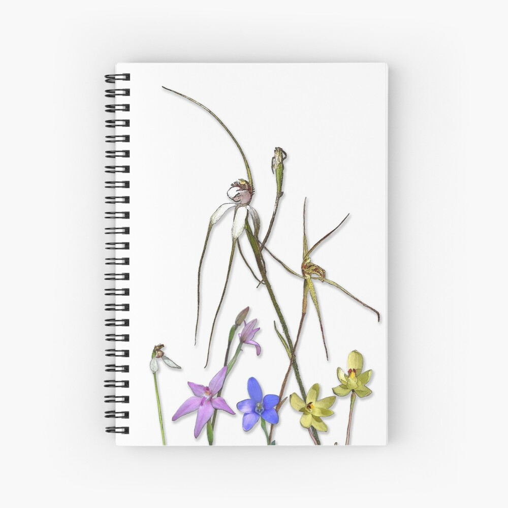Orchids of Australia 7 Native orchids of Western Australia Spiral Notebook