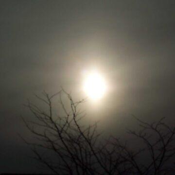 Gray Sun by kellerman