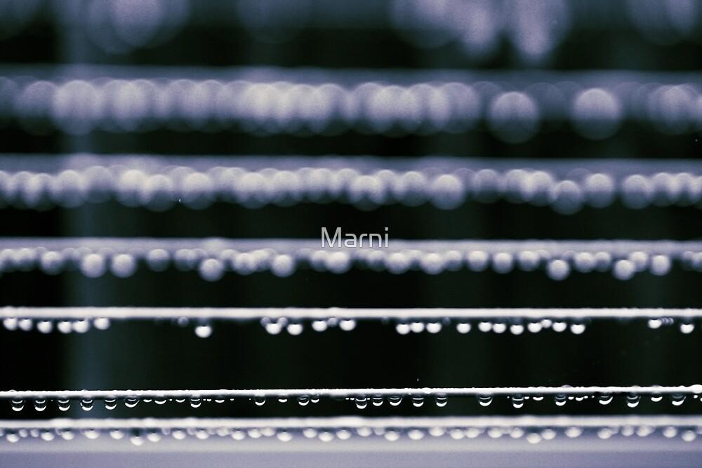 Rain Bokeh by Marni