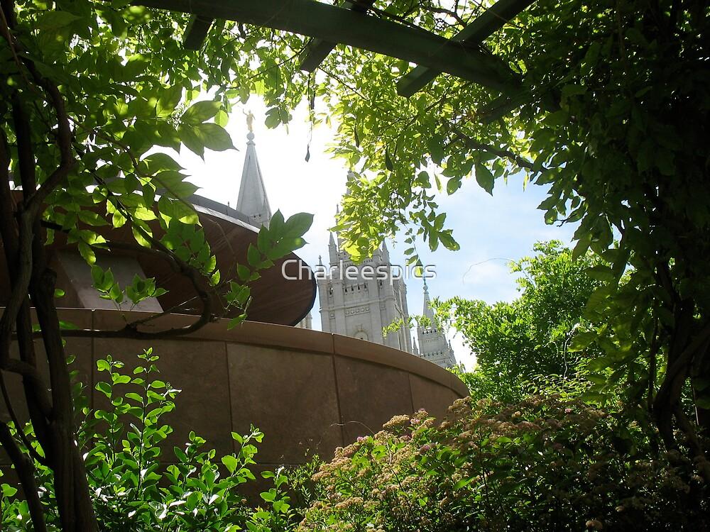 Salt Lake Temple by Charleespics