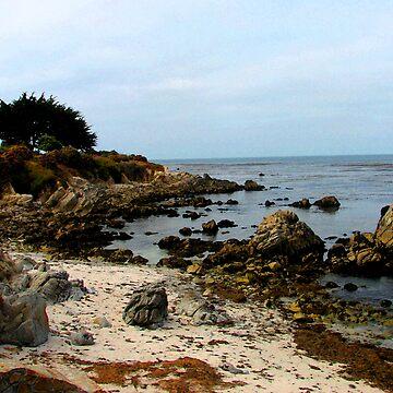 Beach at Monterey by kellerman