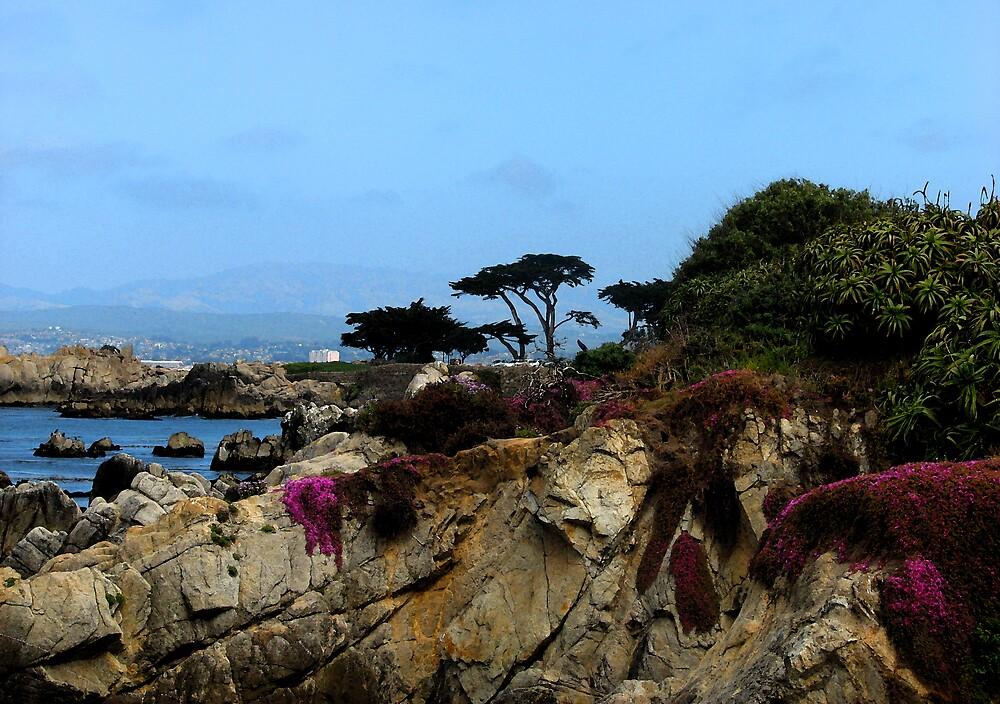 Monterey Beach by M. Stephanie Kellerman