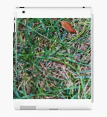 Grassy Earth iPad Case/Skin