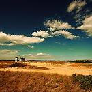 Stage Harbor Light House Cape Cod by Artist Dapixara