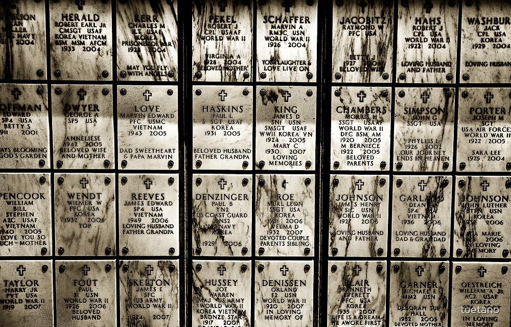 fallen soldiers 6 by tuetano