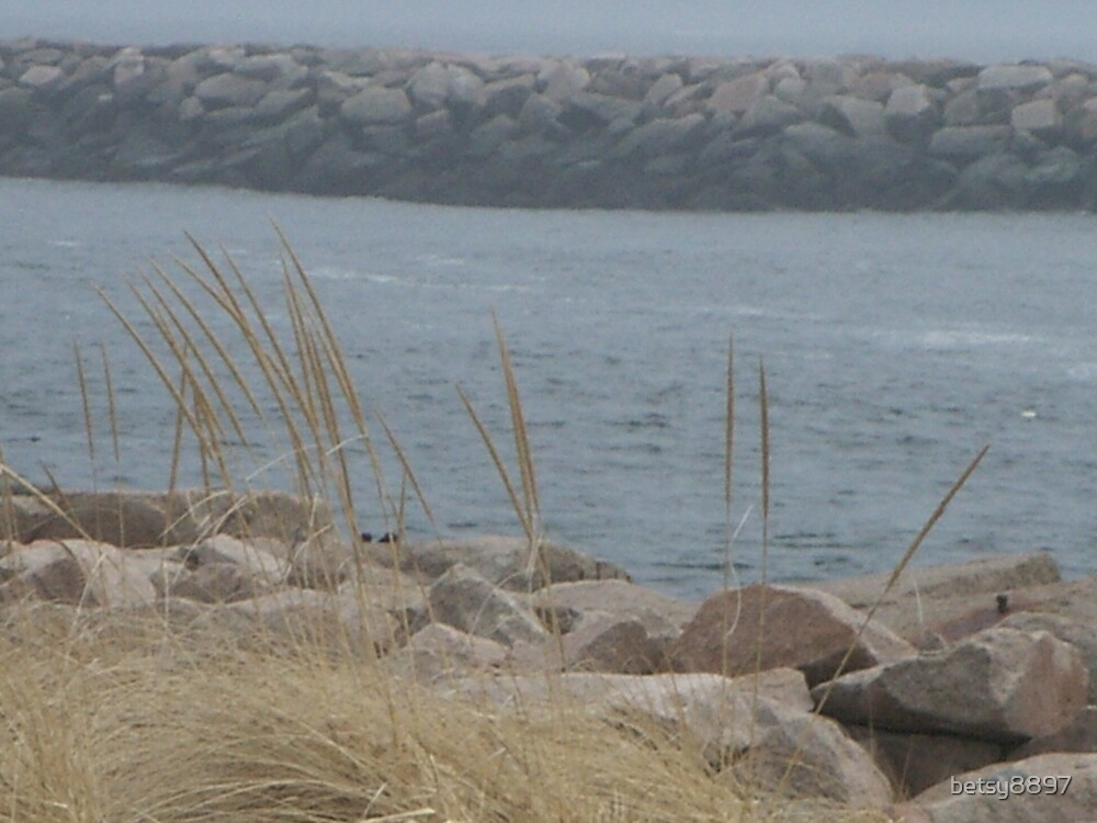 Dune Grass by betsy8897