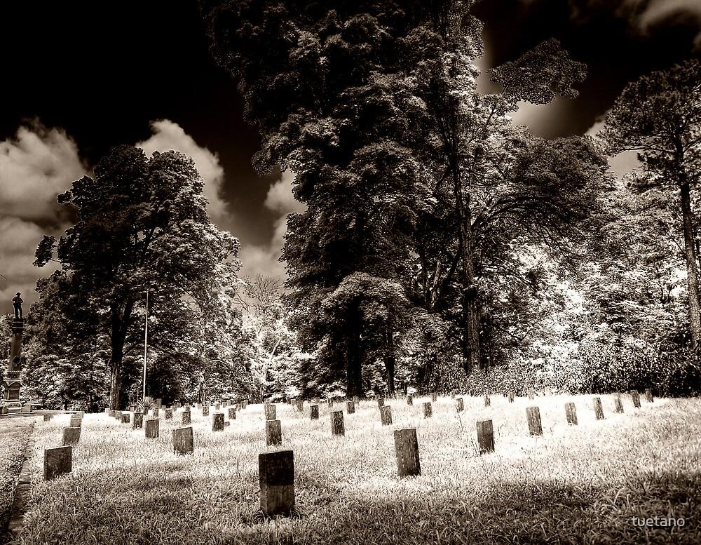 fallen soldiers 8 by tuetano