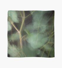 Fleur Blur-Abstract Eucalyptus Leaves on Black Background Scarf