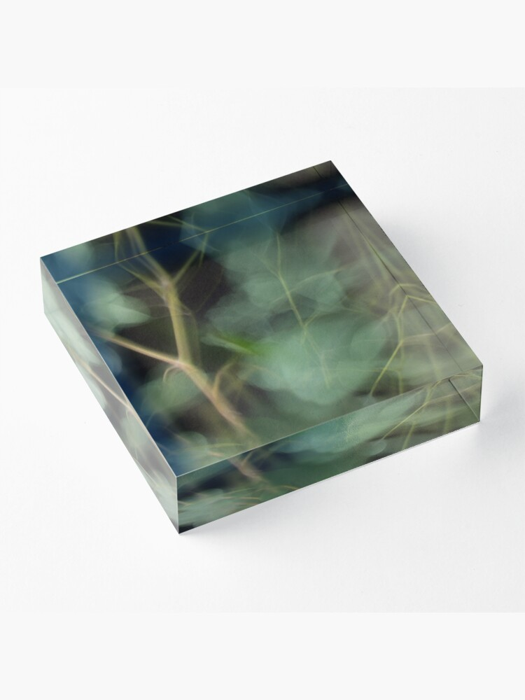 Alternate view of Fleur Blur-Abstract Eucalyptus Leaves on Black Background Acrylic Block