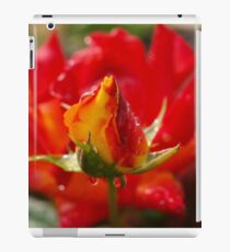 Rosebud framed iPad Case/Skin