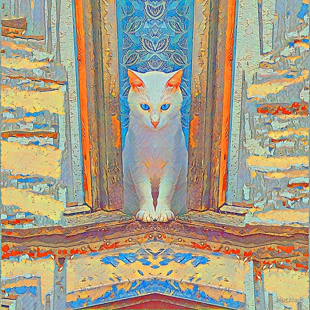 Symmetrical cat by blackhalt