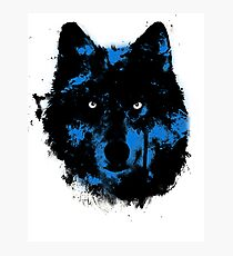 Moonlight Painted Wolf Photographic Print