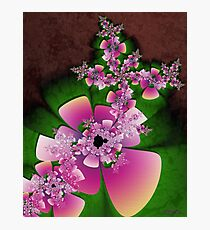 Floral Arrangement Photographic Print