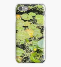 Water Lilies and Weeds on a Pond Closeup iPhone Case/Skin