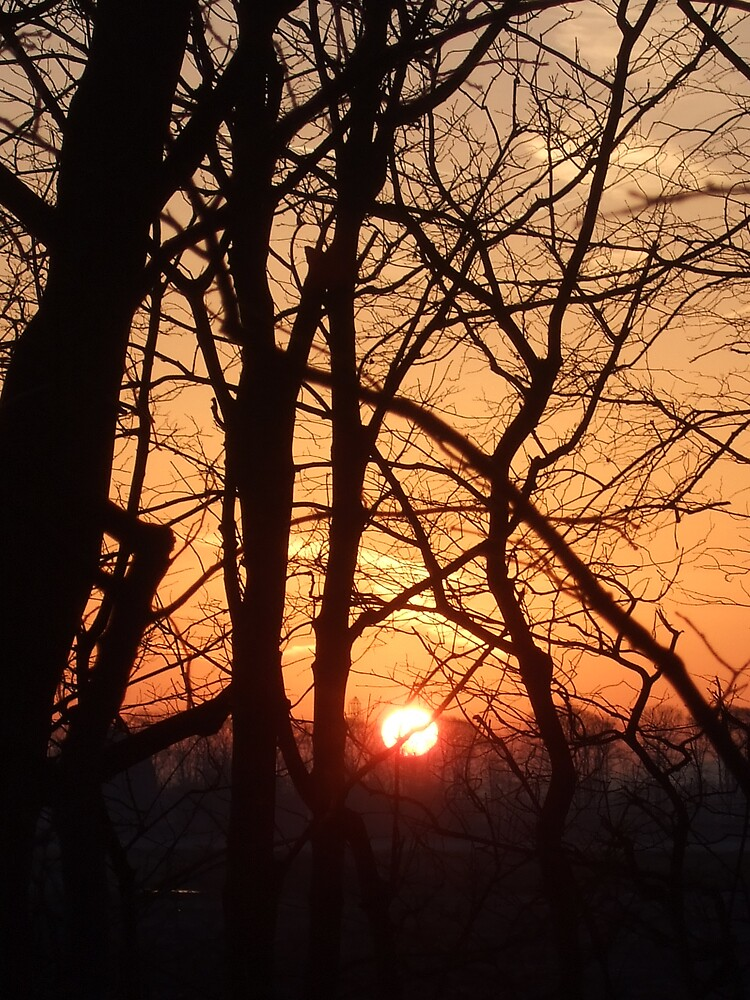 sunrise - Lancashire by Maureen Brittain