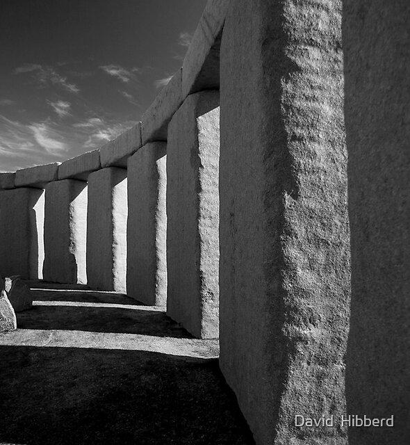 The Megalith At Birth by David  Hibberd